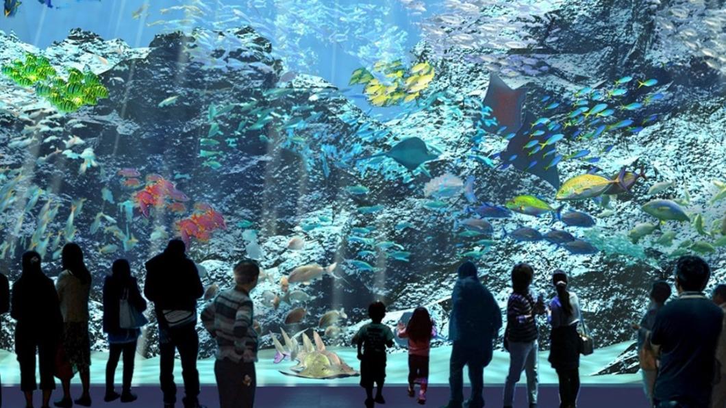 XPark打造將近4層樓高的透明觀景窗。(圖/翻攝自X Park官網) 讓魚兒陪你睡!全台最大水族館結合「夜宿體驗」超夢幻