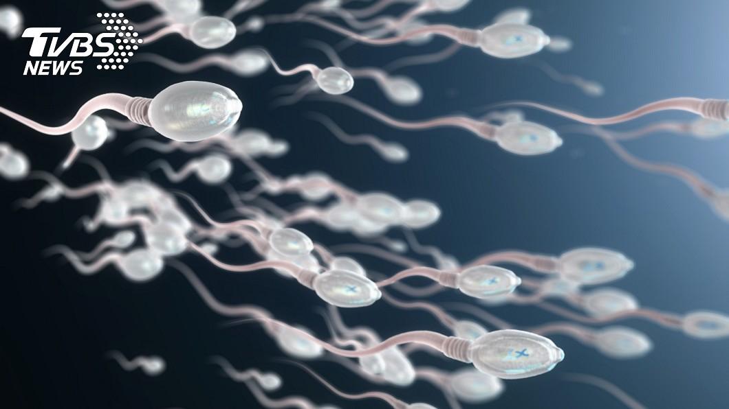 研究指出,新冠病毒恐釀無精症。(示意圖/shutterstock 達志影像) 新冠痊癒變不孕 研究:20%確診康復男「精蟲消失」