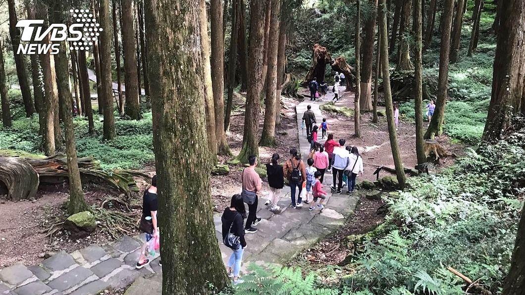 疫情影響,阿里山國家森林遊樂區去年入園人次不到100萬。(圖/中央社資料照) 阿里山遊樂區109年遊客跌破百萬 創10年最低