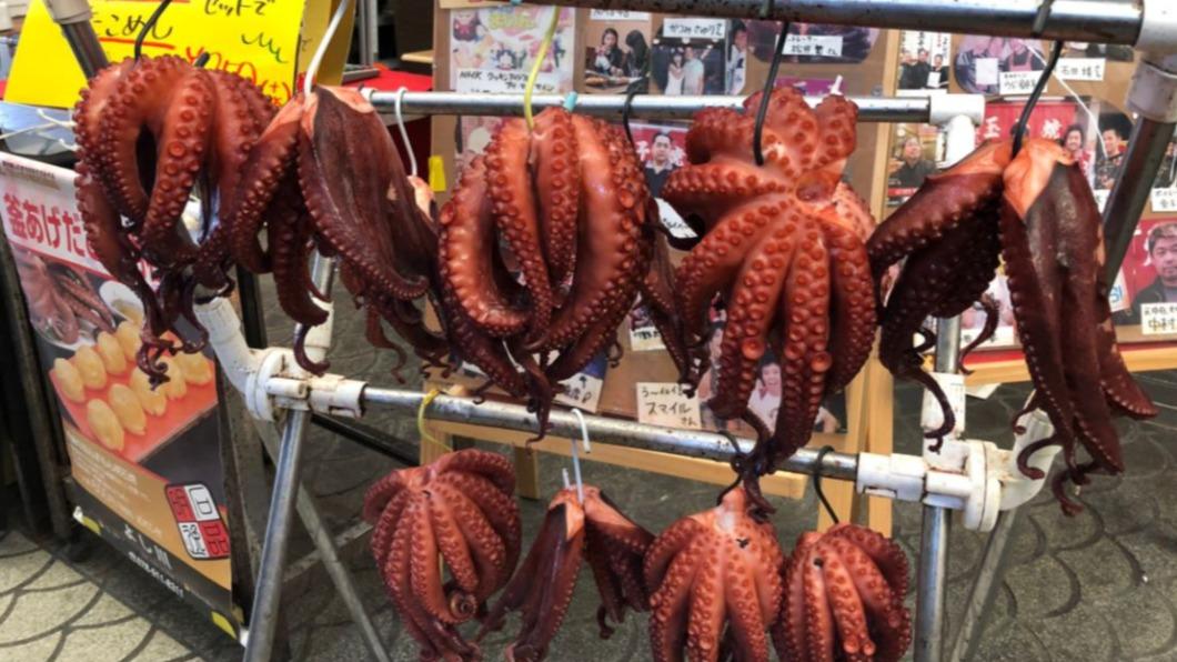 圖/翻攝自@tinkerboy_a推特 暖冬影響! 日本明石港章魚漁獲量翻3倍