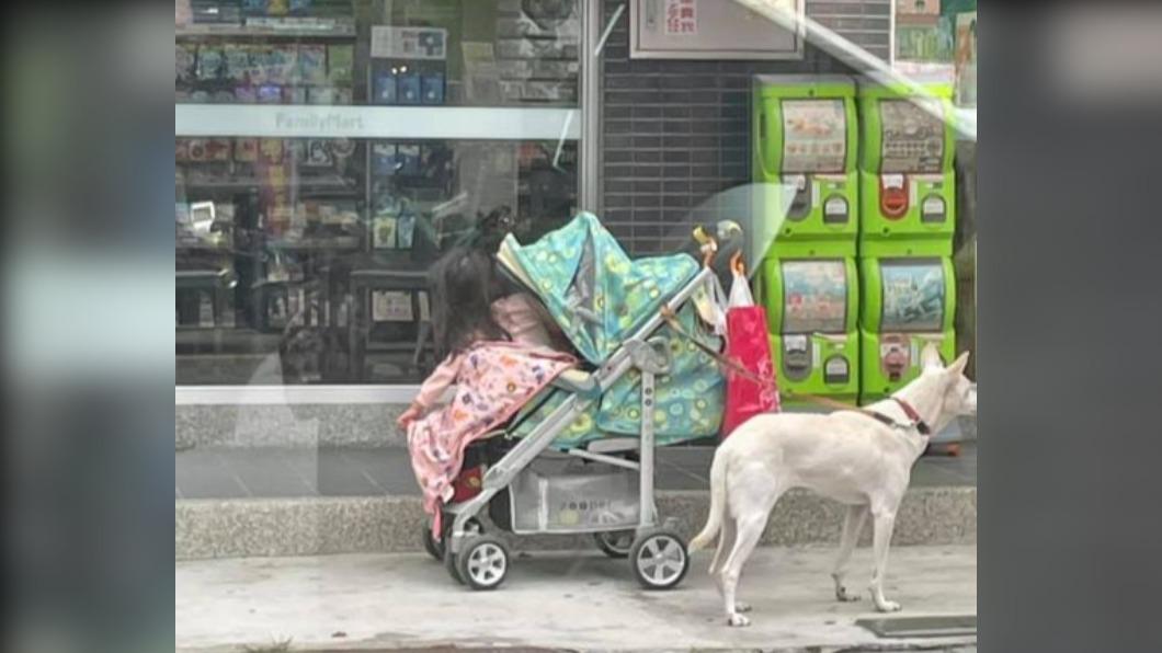女童被獨自留在超商外面。(圖/翻攝自爆廢公社二館臉書) 家長逛超商「小白綁娃娃車顧孩」 全網傻眼:暴衝怎辦