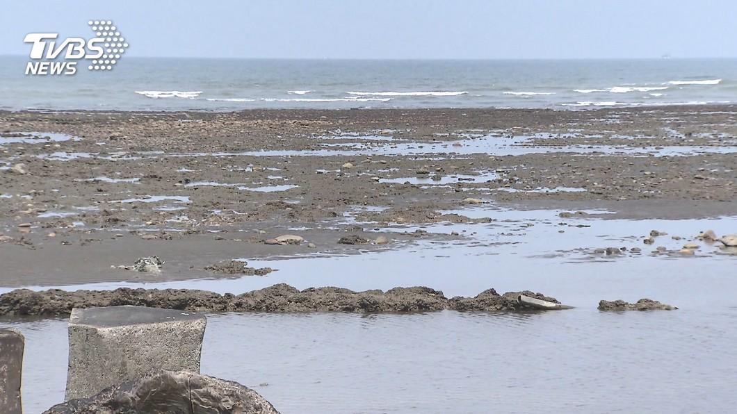 (圖/TVBS) 藻礁公投若通過 經長:減煤努力可能走回頭路