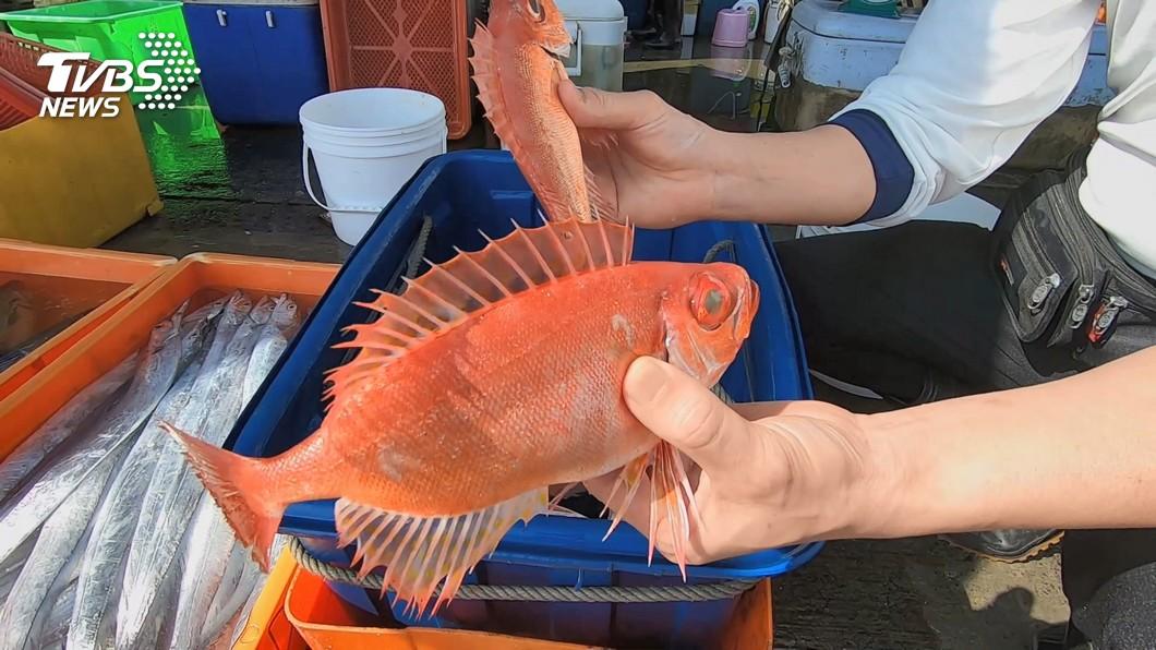 低價魚當高價魚賣 衛生局:最重可罰400萬