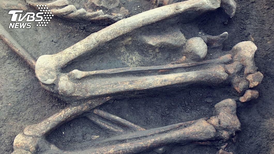 一窺人類起源之謎 科技解密南非「小腳」化石