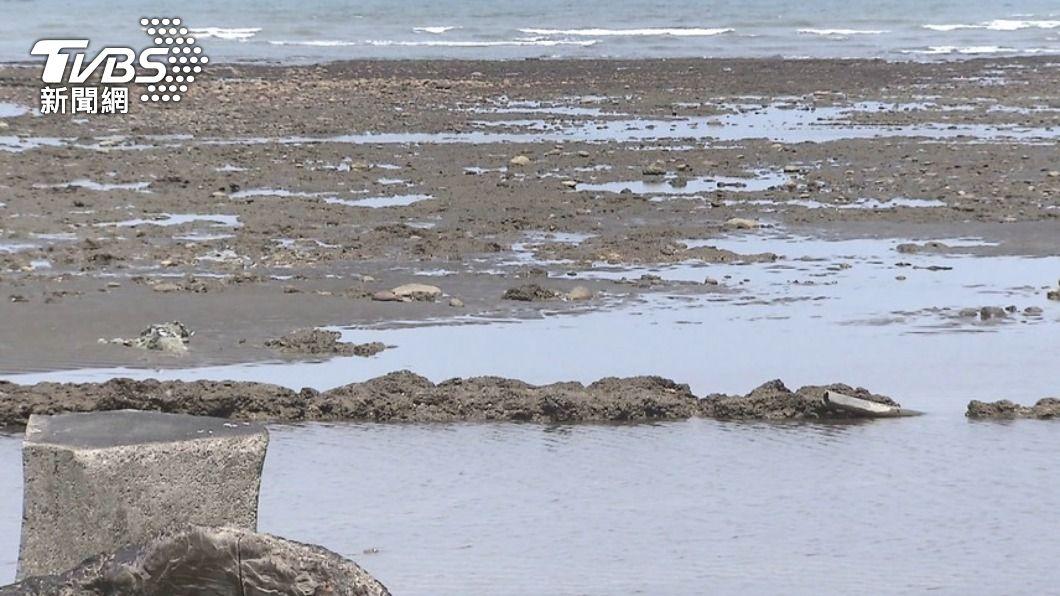 藻礁爭議難解。(圖/TVBS) 環保與環保的兩難 洪申翰:溝通藻礁議題非摸頭