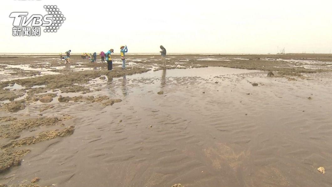 (圖/TVBS) 藻礁議題延燒 洪申翰:年輕人仍相信政府但盼好好說明