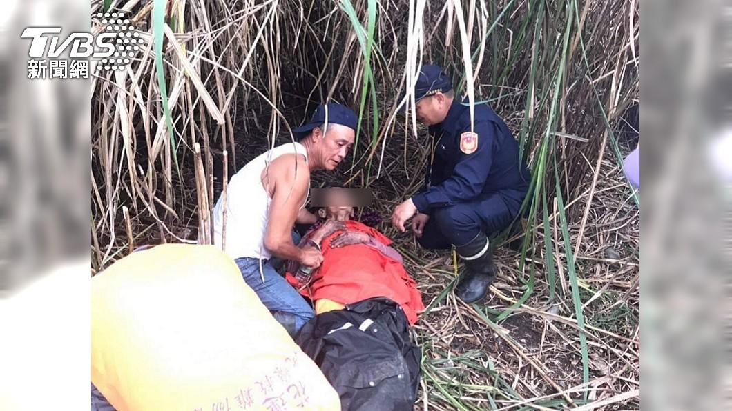 花蓮鳳梨阿嬤失蹤5天後,在芒草叢中找到人了。(圖/TVBS) 花蓮「鳳梨阿嬤」找到了 躺芒草叢吃蘆葦心撐5天