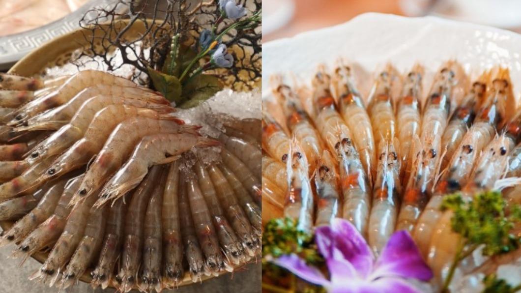 餐廳祭出「幾歲生日就送幾隻蝦」超狂優惠。(合成圖/翻攝自四川龍府、泰滾臉書) 快揪阿公阿嬤吃起來!10餐廳推超狂優惠 幾歲送幾隻蝦
