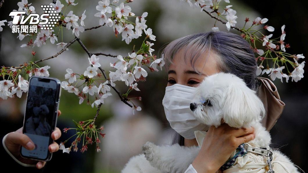 日本東京都、沖繩縣新增確診病例再創3月當地最新紀錄。(圖/達志影像路透社) 全球新冠病歿逾277萬 東京都確診創3月新高