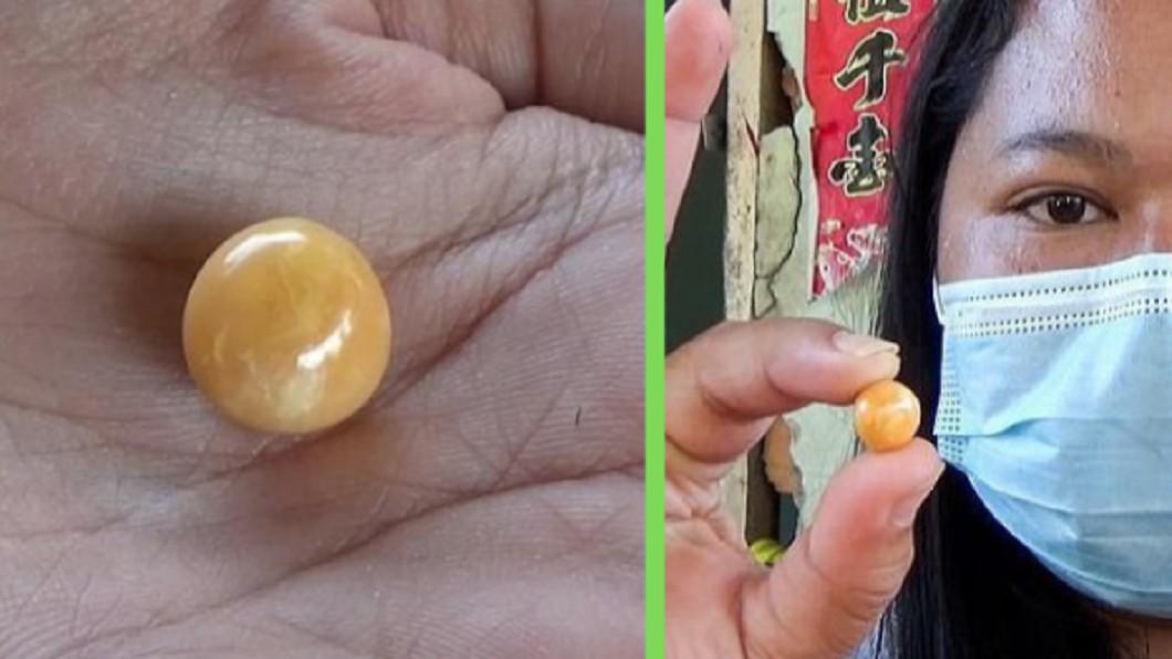 女子撿到珍珠之王。(圖/翻攝自PMH Official臉書) 貧女65元買海螺 竟咬到920萬「泰國龍珠」發了