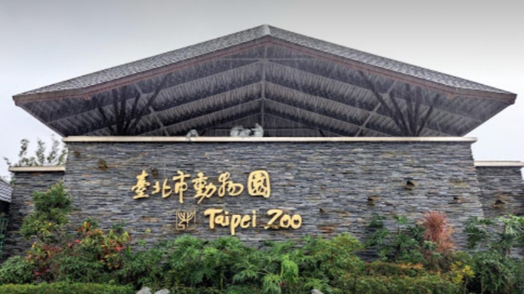 台北木柵動物園自去年截至目前,兩年內已發生三起動物逃脫事件。(圖/翻攝自Google map) 木柵動物園管理螺絲鬆?半年內3起動物脫逃