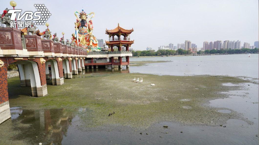 高市蓮池潭部分湖底乾涸裸露。(圖/中央社) 高市蓮池潭乾旱水位略降 不影響滑水及龍舟賽