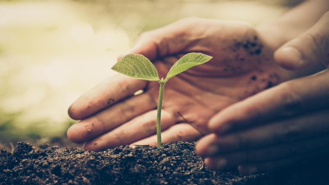 示意圖/翻攝自 Shutterstock 打電動救地球!電競拚晉級.再上街撿垃圾決勝負