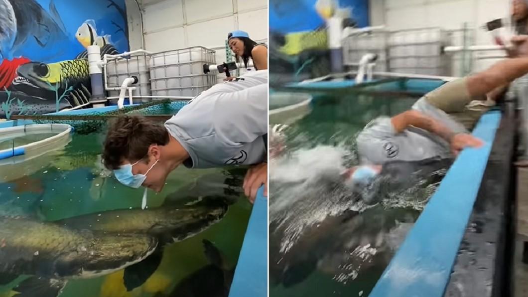 網紅用嘴咬魚餌餵魚,下秒掉入水中。(圖/翻攝自《Paul Cuffaro》YouTube) 美網紅嘴咬餌戲耍 慘遭「巨骨舌魚」撞頭墜水底沉沒
