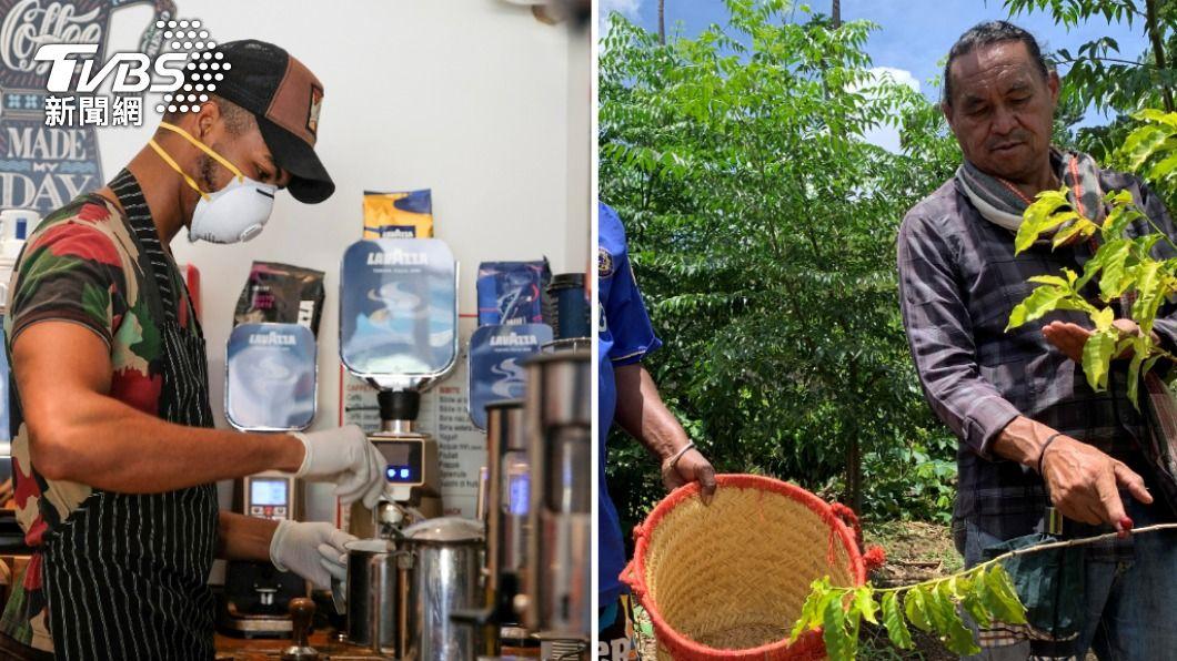 近年許多科學研究顯示,全球暖化對咖啡種植帶來災難性打擊。(圖/達志影像路透社) 全球暖化扼殺小確幸 「死而復生」滅種咖啡成轉機