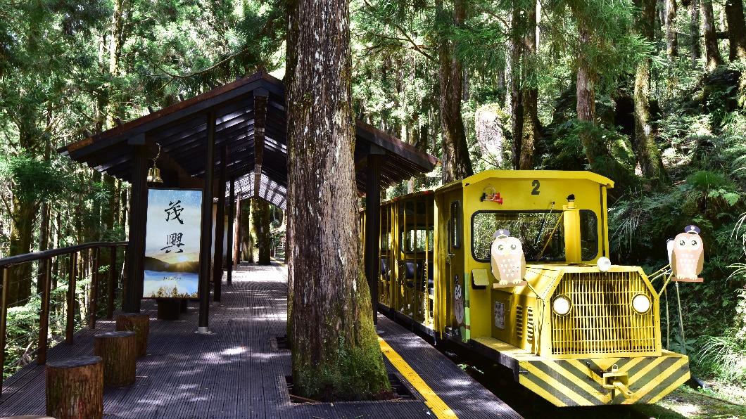 圖/林務局提供 快訊/太平山遊樂區、羅東林業文化園區 5/15至28封閉
