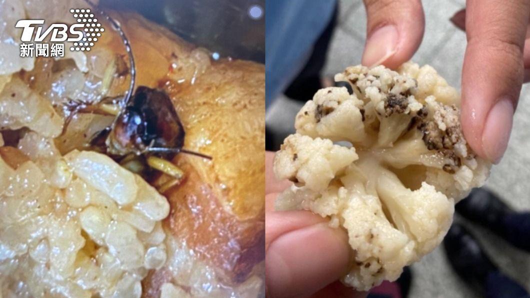 學生的餐食中出現蟑螂及發霉。(圖/TVBS) 午餐「蟑螂油飯、發霉花椰菜」 新北貴族高中爆食安危機