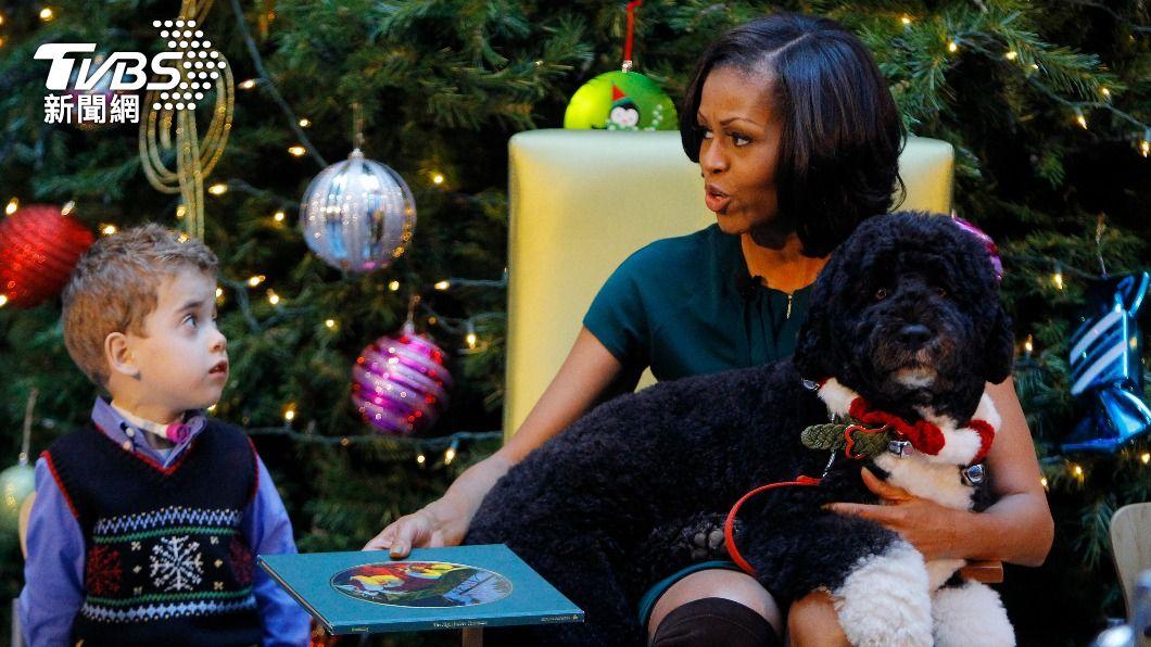 小波過去與蜜雪兒一同出席白宮聖誕活動。(圖/達志影像路透社) 前白宮第一狗「小波」病逝 歐巴馬感性發文:痛失摯友