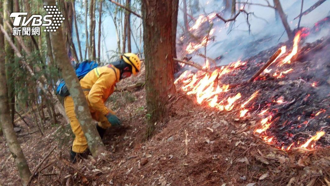 玉山國家公園八通關杜鵑營地發生森林大火。(圖/TVBS) 玉山森林大火連燒5天 NCC專委道歉認:是我引起的