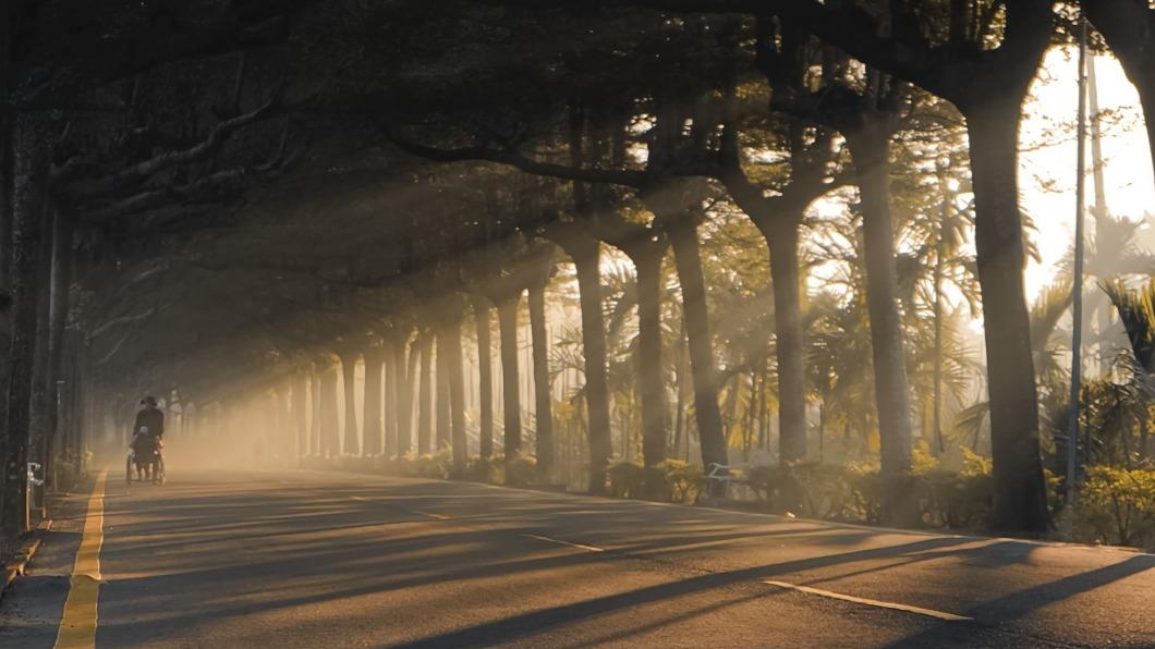 確診者曾多日赴泗林綠色隧道散步。(圖/翻攝自潘孟安臉書) 台灣尾淪陷!屏東確診男曾赴萬華 多次到潮州綠色隧道
