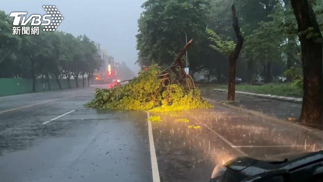 圖/TVBS 滂沱大雨下到天亮 高雄、台南劇烈降雨路樹倒塌