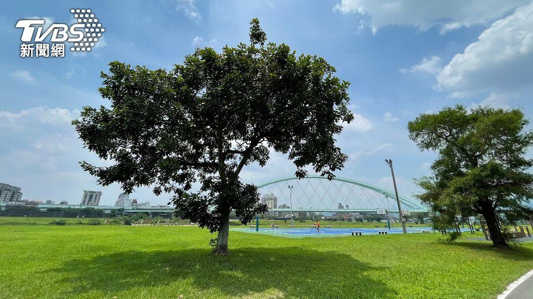 (圖/中央社) 天氣悶熱各地高溫上看33度 留意午後雷陣雨
