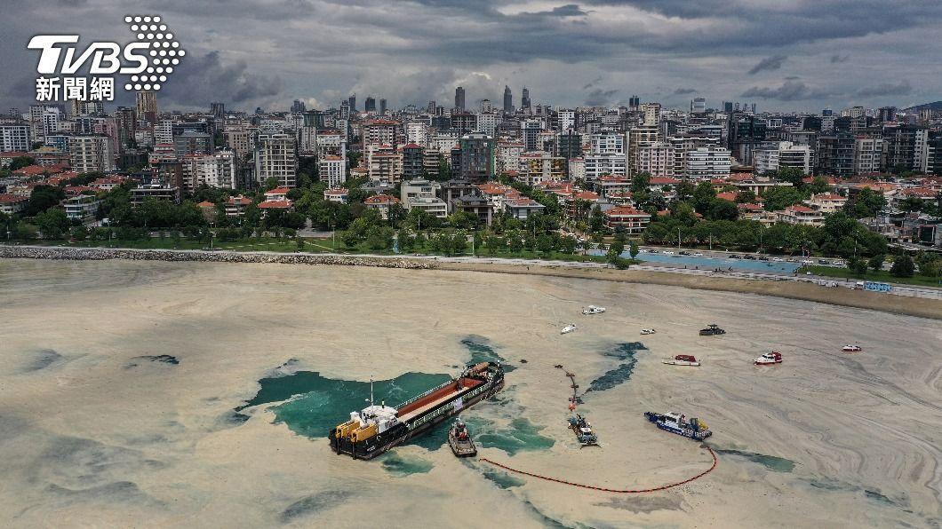 土耳其海域出現俗稱「海鼻涕」的海洋黏液。(圖/達志影像路透社) 「海鼻涕」恐悶死珊瑚! 科學家曝解方:海洋細菌可除黏液