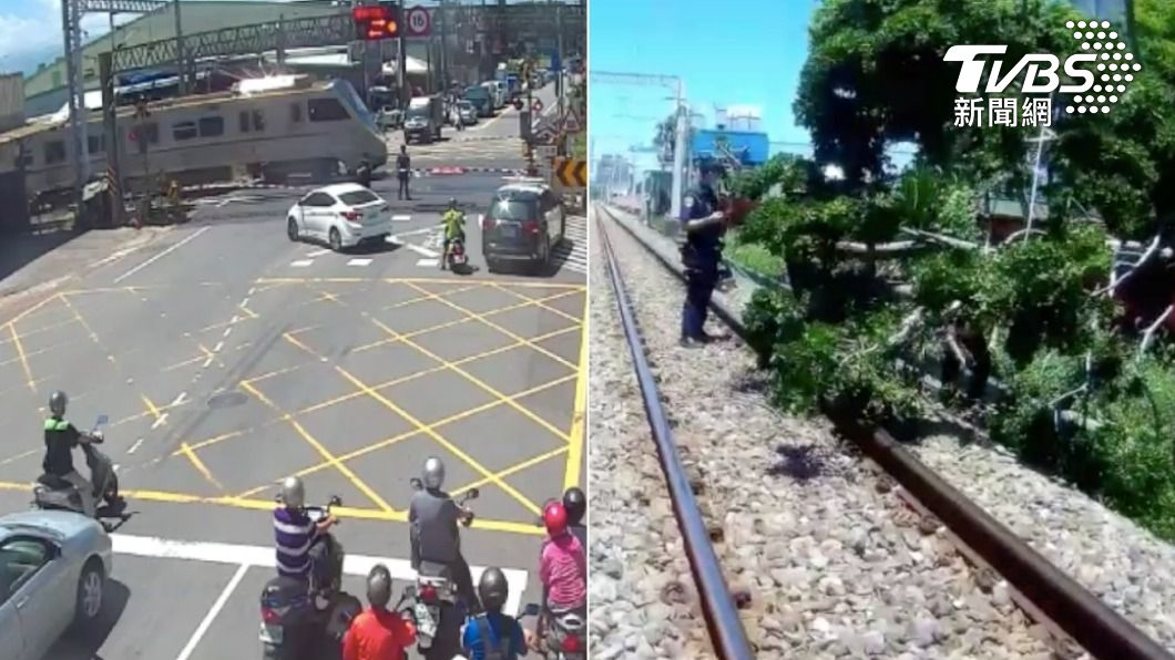 員警緊急壓下按鈕避免列車撞上大樹。(圖/TVBS) 路樹倒鐵軌!警衝平交道「急壓按鈕」 緩住列車畫面曝