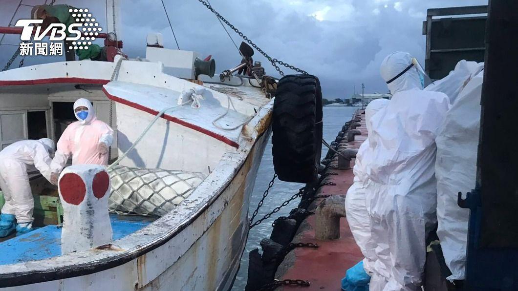(圖/中央社) 海巡查獲澎湖漁船走私逾噸魚翅乾貨 市價6百萬