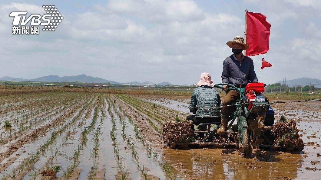 颱風疫情雙打擊 北韓饑荒恐千萬人挨餓