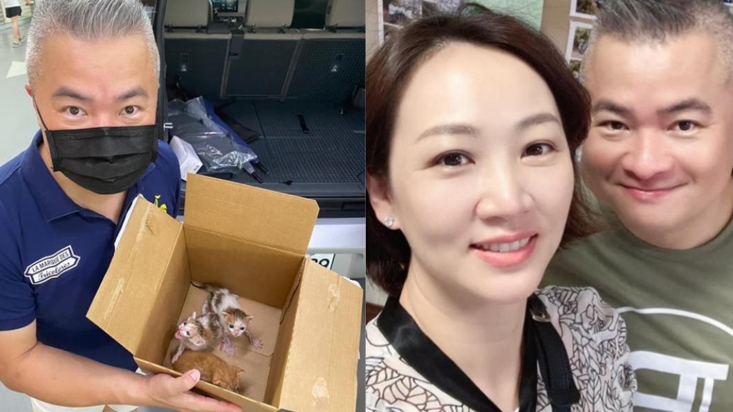 郁方老公在汽車底盤發現3隻小貓。(圖/翻攝自郁方臉書) 郁方尪車底撿到幼貓 身價竟值「2千萬日幣」超稀有!