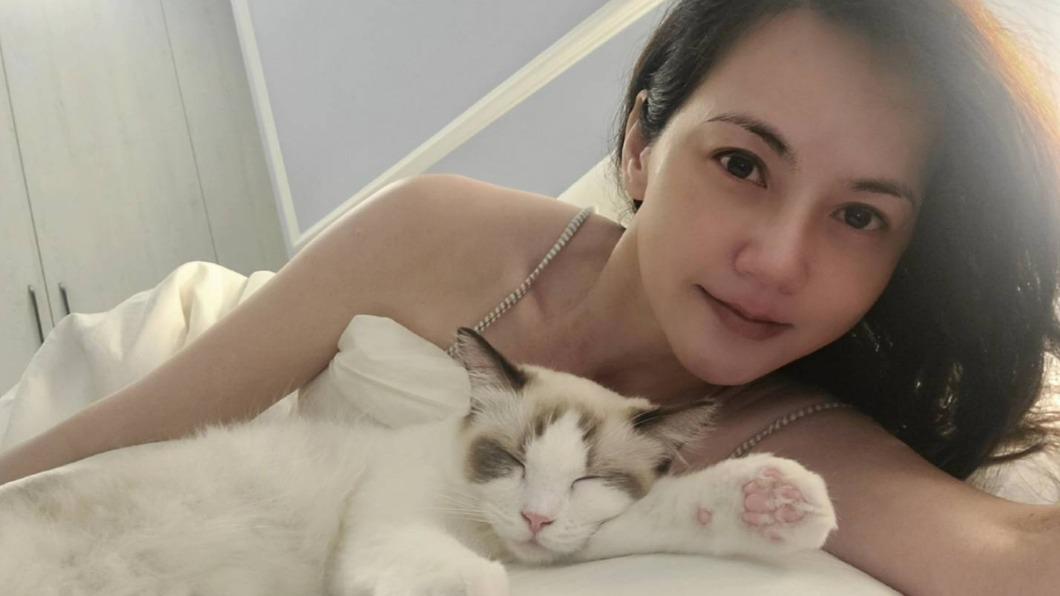 簡沛恩為愛貓「麻糬」開設IG帳號。(圖/翻攝自rogdoll_mochi IG) 簡沛恩曾不想公開想法 為愛貓開IG帳號「性情大變」