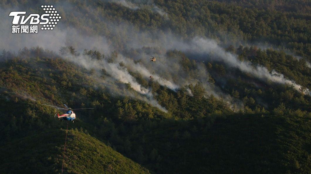 土耳其47省近兩週共發生240場林火。(圖/達志影像美聯社) 燒掉許多家庭生計!土耳其240場林火近乎全滅