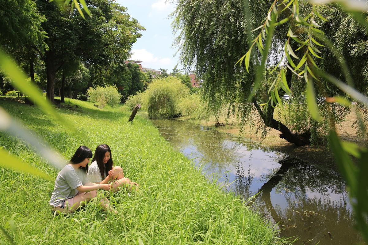 垂柳、水渠、綠地,公園裡到處有閒情角落。