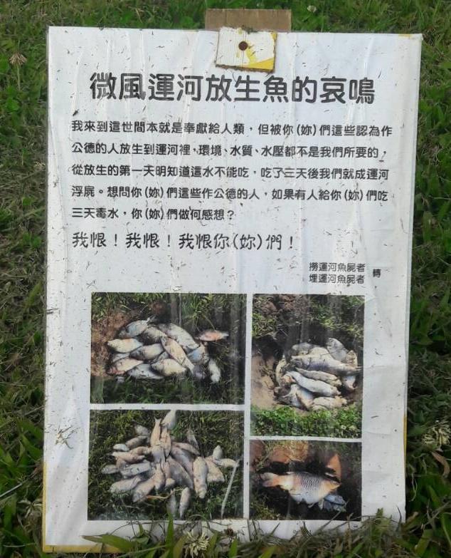 微風運河驚傳放生害死,民眾設立告示牌訴說「放生魚的哀鳴」。(民眾提供)