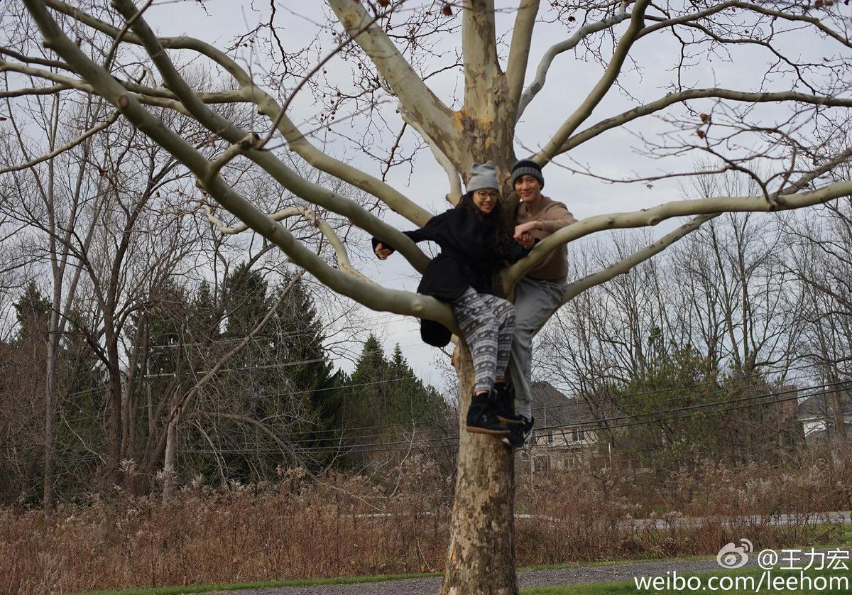 王力宏夫婦4年前就在紐約爬樹入鏡。(宏聲音樂提供)