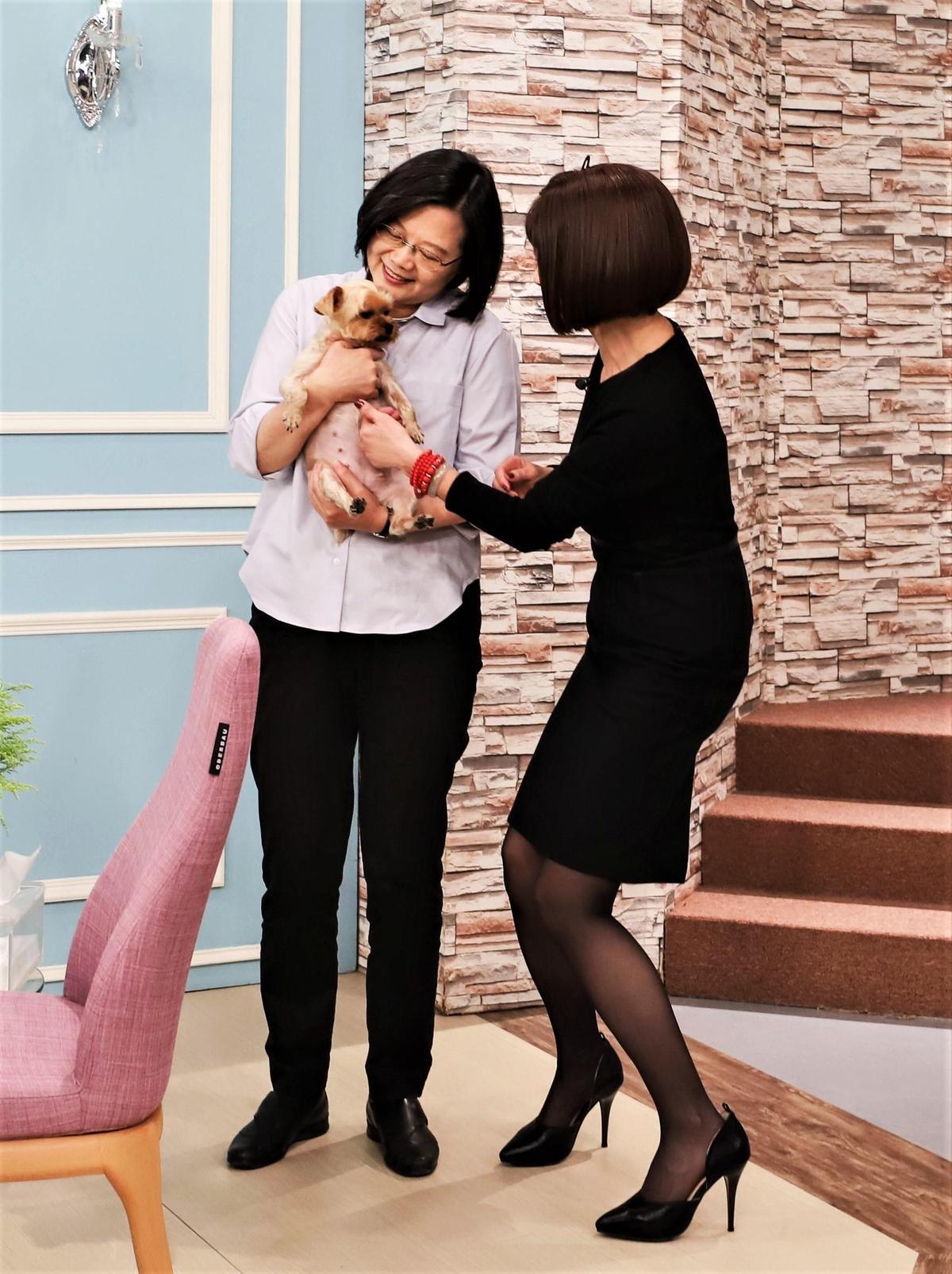 愛狗的蔡英文對陳美鳳愛犬妞妞喜愛有加,當場邀約陳美鳳帶狗到官邸玩。(民視提供)