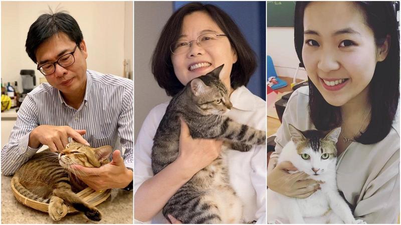 圖/鏡週刊提供 藍綠都有剷屎官 曬貓成另類選舉宣傳術