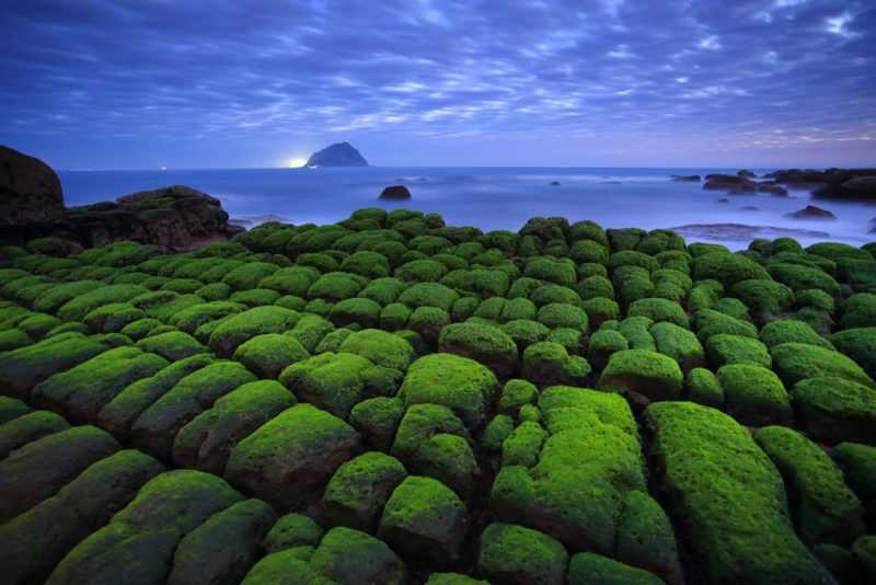 自然景觀組金牌作品-綠意盎然(北觀處提供)