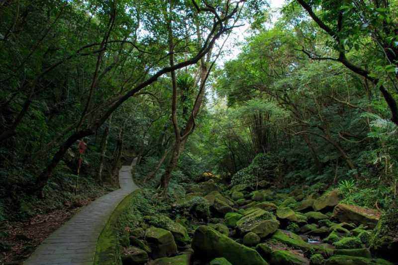 大溝溪原始的溪溝,彷彿人間仙境(台北市工務局提供)