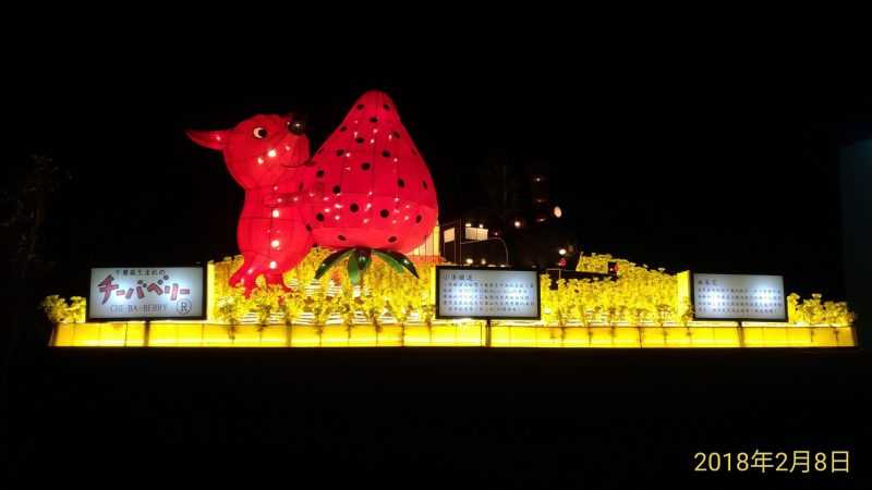 嘉義縣也廣邀海外各地的國家來台展燈,並在故宮南院的國際暨友誼城市燈區展出。(嘉義縣政府提供)