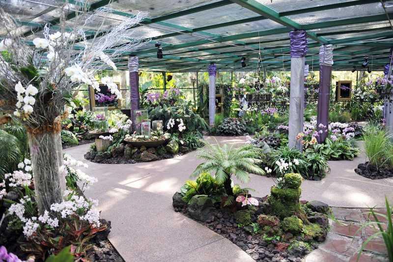 ▲別緻的國家胡姬花園。(圖片來源:新加坡旅遊局)