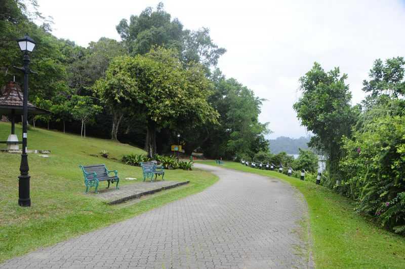 ▲麥里芝蓄水池的自然觀光步道徒步慢行的話耗時大概4個小時。(特派記者杜明賢攝)