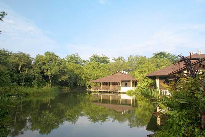 ▲麥里芝自然觀光步道和蓄水池公園,親水更多了幾分浪漫。(圖片來源:新加坡旅遊局)