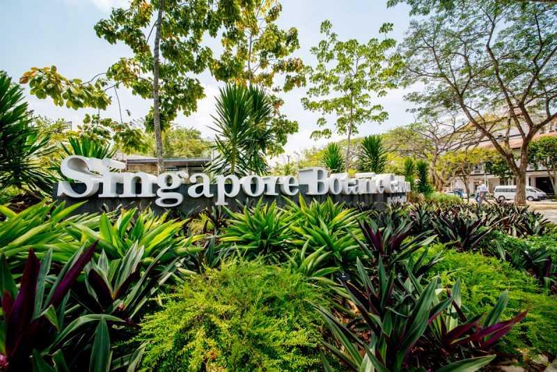 ▲新加坡植物園地鐵植物園站出口一上來就是大門,直接抵達免轉車。(圖片來源:新加坡旅遊局)