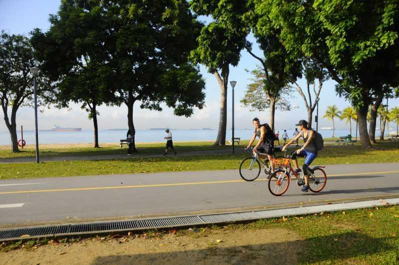 ▲在新加坡騎自行車,不但減少對於環境造成的觀光公害,同時還可以深入體驗當地的餐廳、景點。(特派記者杜明賢攝)