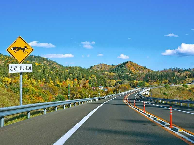 北海道自駕過程可飽覽沿途景色風光(易遊網提供)