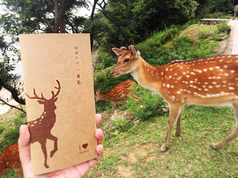 「馬祖限定版」老酒麵線禮盒,限量贈送小鹿手札。(圖:五木拉麵粉絲團提供)