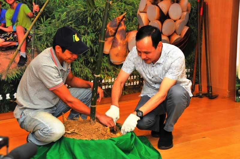 新北市長朱立倫與新北青農示範挖竹筍(記者杜明賢攝)