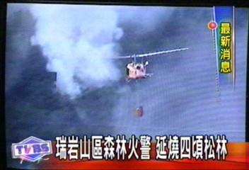 瑞岩山區森林火警 延燒4頃松林